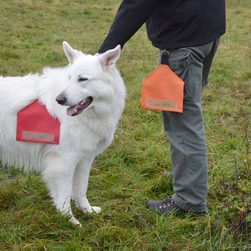 Hundekotbeutel in CleanWalk Transport-Tasche packen
